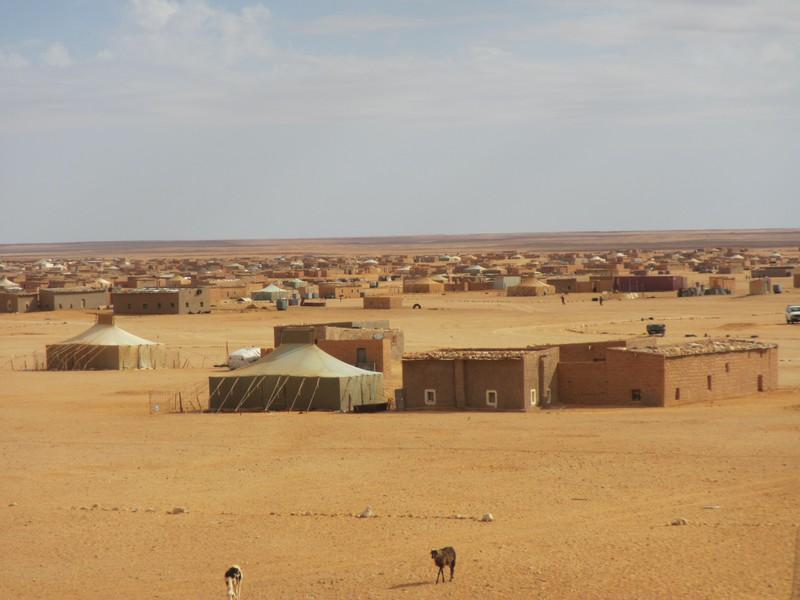 Saharako errefuxiatuei laguntza eman die Getxoko Udalak