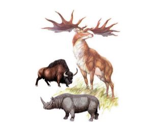 Uribe Kostako fauna, duela 400.000 urte
